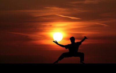 Martial arts types