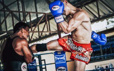 Are the martial arts still in development?